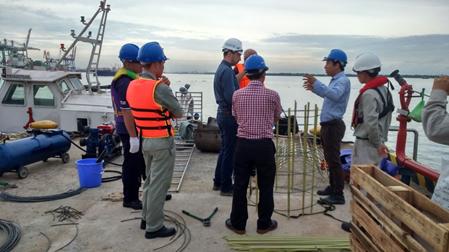 Tăng cường kết cấu cảng Đình Vũ – Hải Phòng